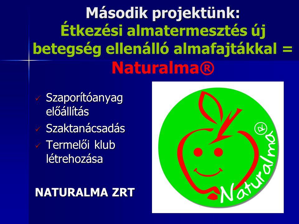 Második projektünk: Második projektünk: Étkezési almatermesztés új betegség ellenálló almafajtákkal = Naturalma®  Szaporítóanyag előállítás  Szaktanácsadás  Termelői klub létrehozása NATURALMA ZRT