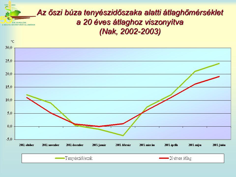 Az őszi búza tenyészidőszaka alatti átlaghőmérséklet a 20 éves átlaghoz viszonyítva (Nak, 2002-2003) °C