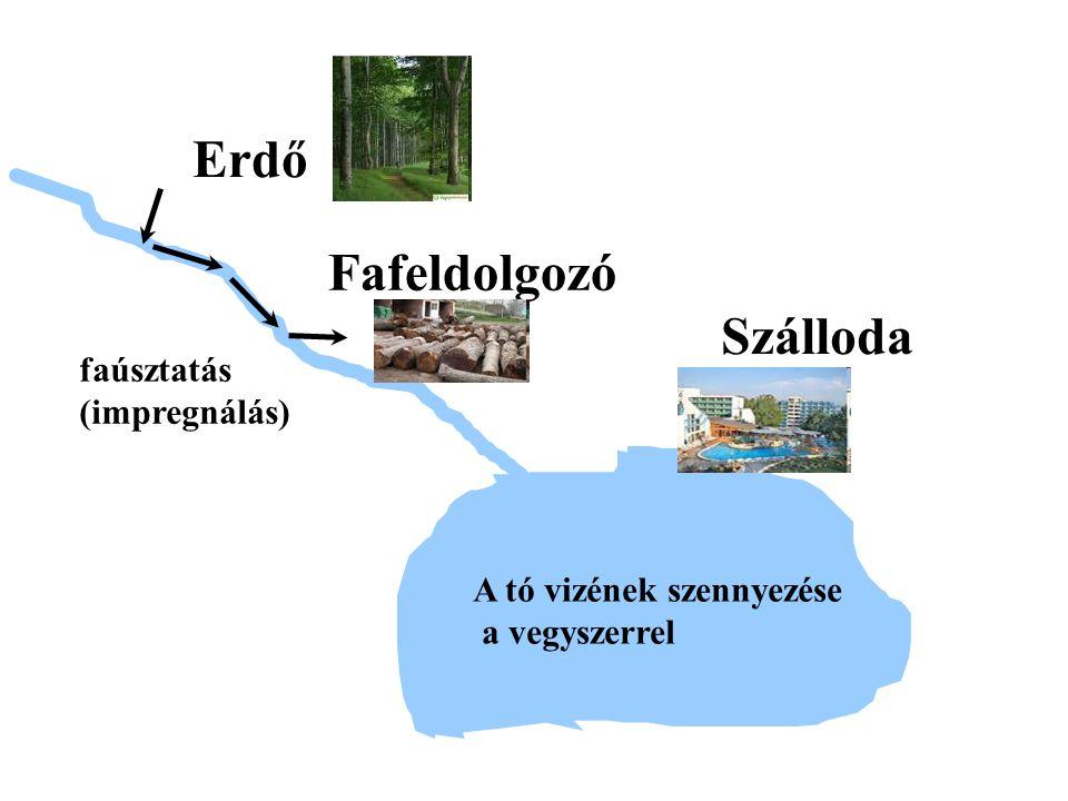Erdő Fafeldolgozó Szálloda faúsztatás (impregnálás) A tó vizének szennyezése a vegyszerrel