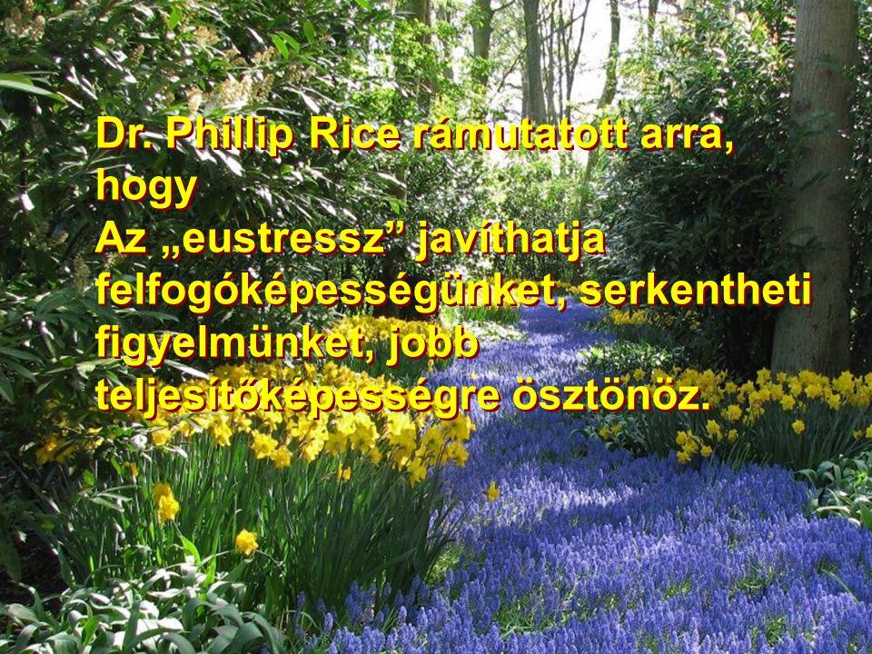 """Dr. Phillip Rice rámutatott arra, hogy Az """"eustressz"""" javíthatja felfogóképességünket, serkentheti figyelmünket, jobb teljesítőképességre ösztönöz. Dr"""