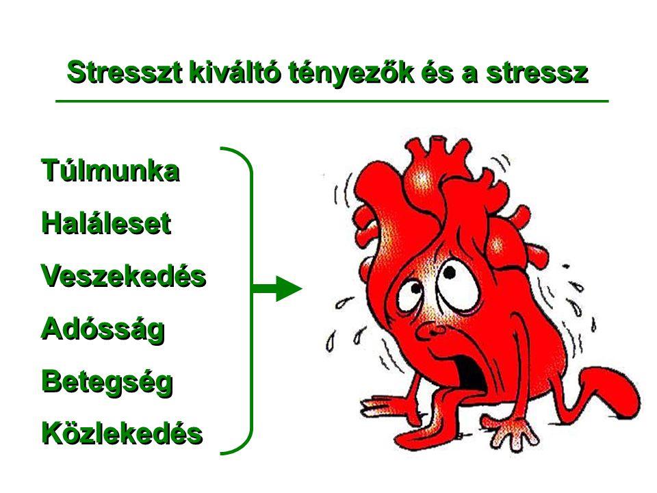 Stresszt kiváltó tényezők és a stressz __________________________________ Túlmunka Haláleset Veszekedés Adósság Betegség Közlekedés Túlmunka Haláleset