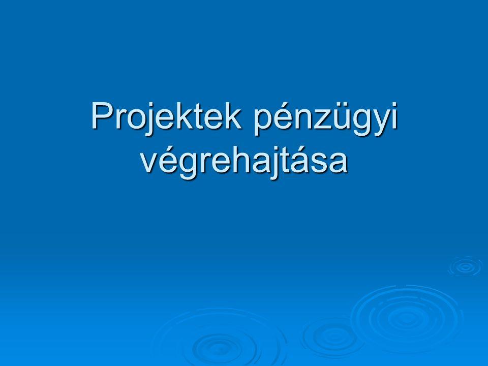 Projektek pénzügyi végrehajtása
