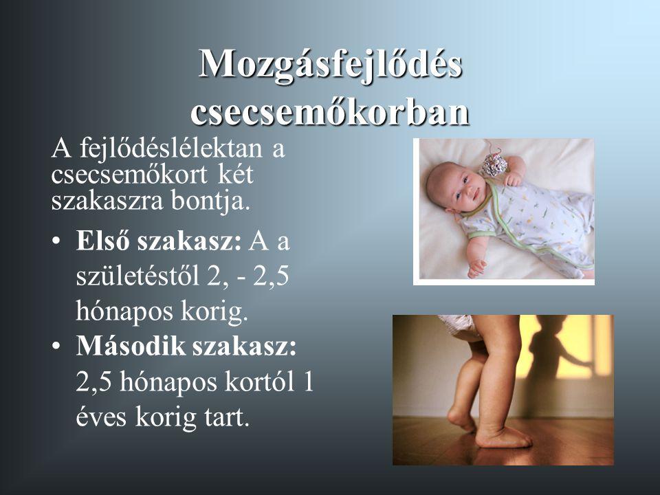 A második szakasz jellemzői •A csecsemő növekedése és testi fejlődése együtt jár a a koordináció és a mozgáskészségek intenzív fejlődésével •A magasság és testsúly növekedésével a fej, törzs és láb testhosszhoz viszonyított arányai megváltoznak, ennek következtében a súlypont a 12 hónapos korra lejjebb süllyed, ez megkönnyíti a két lábon történő egyensúlyozást •Az izmok növekedése és a csontok keményedése, valamint az agykéreg, idegrendszer fejlődése előfeltétele a koordináltabb mozgásnak