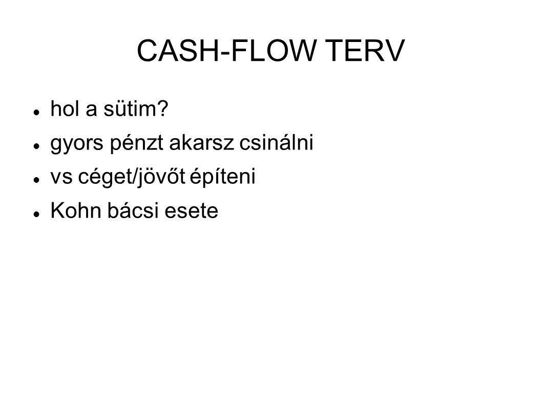 CASH-FLOW TERV  hol a sütim?  gyors pénzt akarsz csinálni  vs céget/jövőt építeni  Kohn bácsi esete