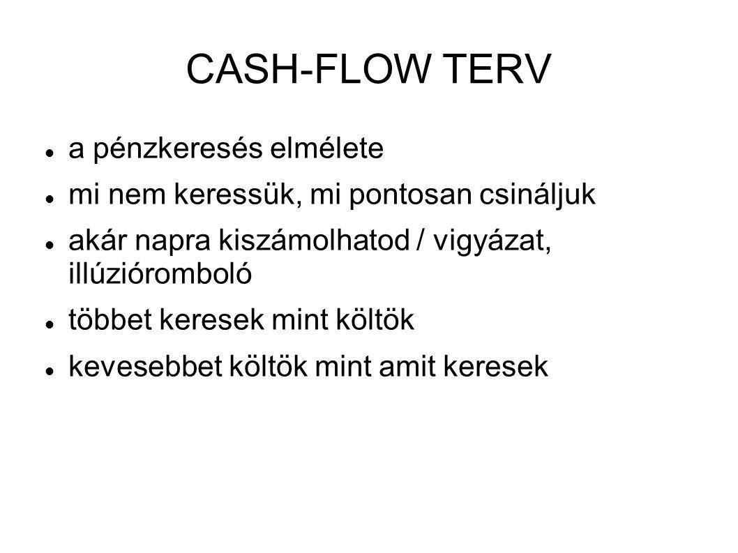 CASH-FLOW TERV  a pénzkeresés elmélete  mi nem keressük, mi pontosan csináljuk  akár napra kiszámolhatod / vigyázat, illúzióromboló  többet kerese