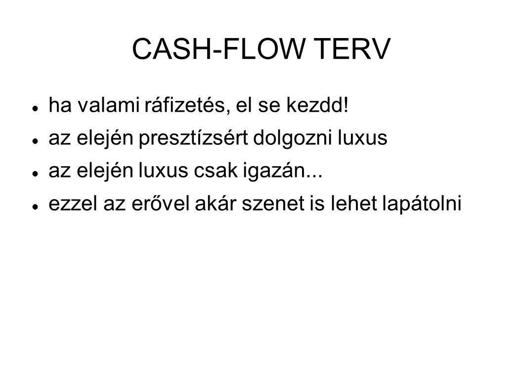 CASH-FLOW TERV  ha valami ráfizetés, el se kezdd!  az elején presztízsért dolgozni luxus  az elején luxus csak igazán...  ezzel az erővel akár sze