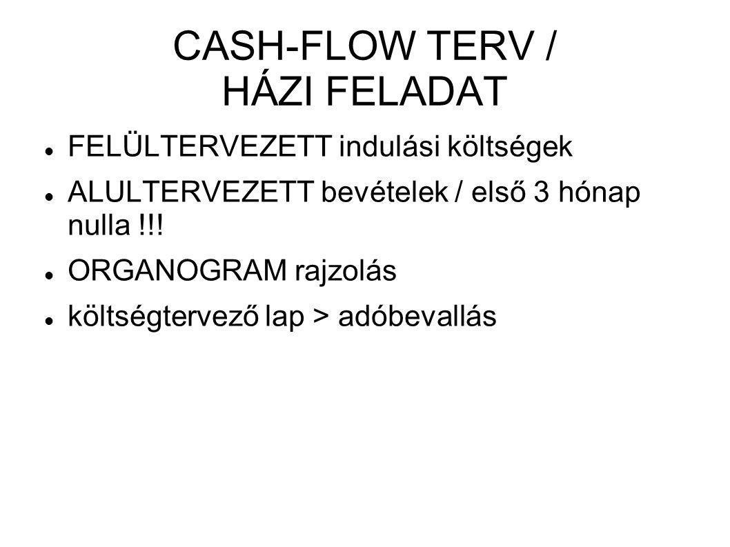 CASH-FLOW TERV / HÁZI FELADAT  FELÜLTERVEZETT indulási költségek  ALULTERVEZETT bevételek / első 3 hónap nulla !!!  ORGANOGRAM rajzolás  költségte
