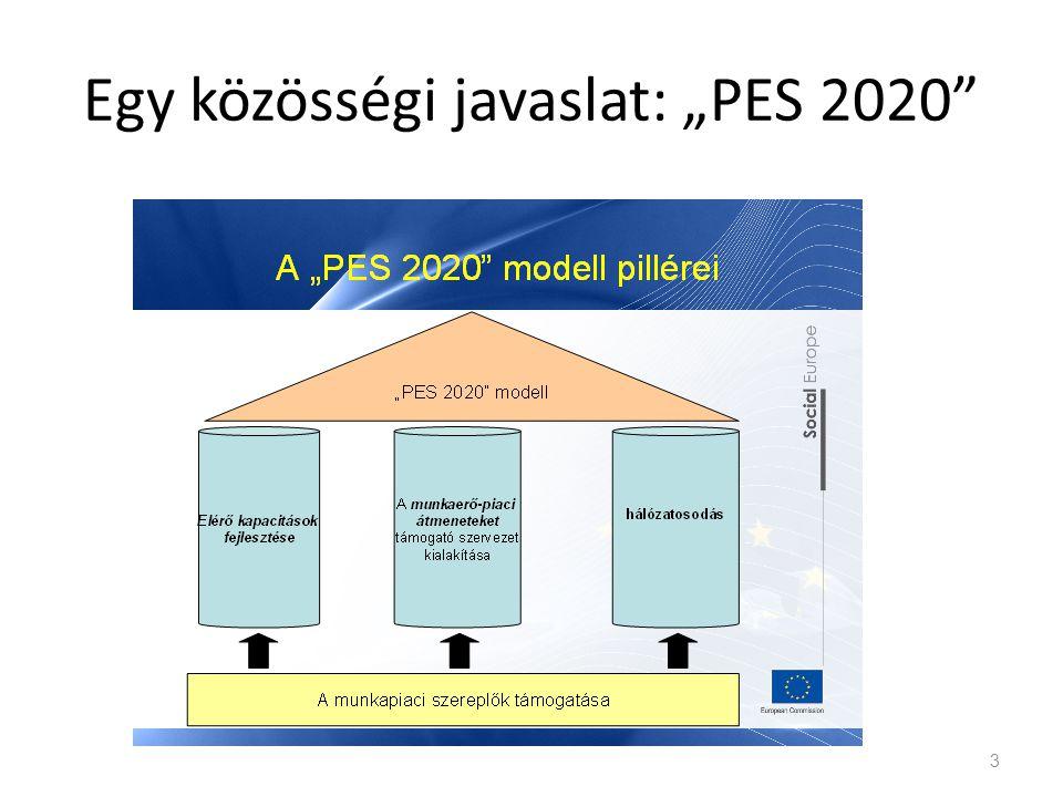 """Egy közösségi javaslat: """"PES 2020"""" 3"""