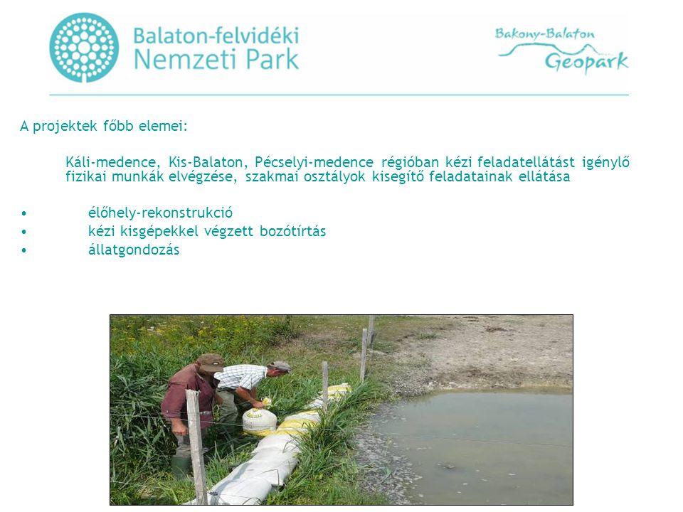 Láprétek, gyepek és fás legelők értékeinek védelme és vonalas létesítmények természetkárosító hatásainak mérséklése a Balaton- felvidéki Nemzeti Park Igazgatóság működési területén KEOP-3.1.2/2F/09-2010-0026 azonosítási számú pályázat •A Nemzeti Fejlesztési Ügynökség Új Széchenyi Terv Környezet és Energia Operatív program keretén belül Élőhelykezeléshez kapcsolódó infrastruktúra fejlesztés tárgyú felhívást tett közzé, melyre a BfNPI fenti számú befogadott pályázatát támogatásban részesítette az alábbiak szerint: •A projekt összköltsége nettó: 273.
