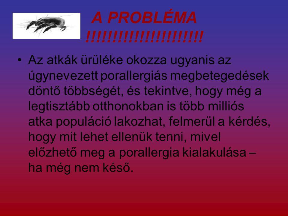 A PROBLÉMA !!!!!!!!!!!!!!!!!!!!!.