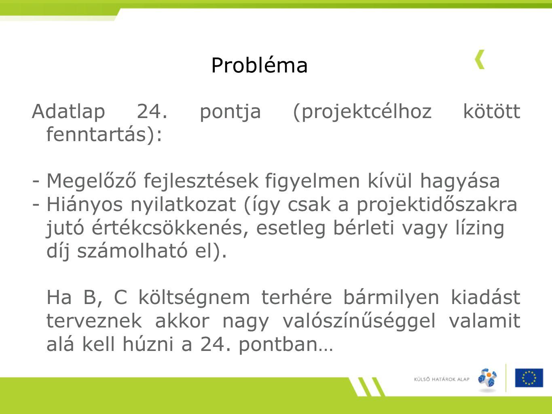 Probléma Adatlap 24. pontja (projektcélhoz kötött fenntartás): -Megelőző fejlesztések figyelmen kívül hagyása -Hiányos nyilatkozat (így csak a projekt