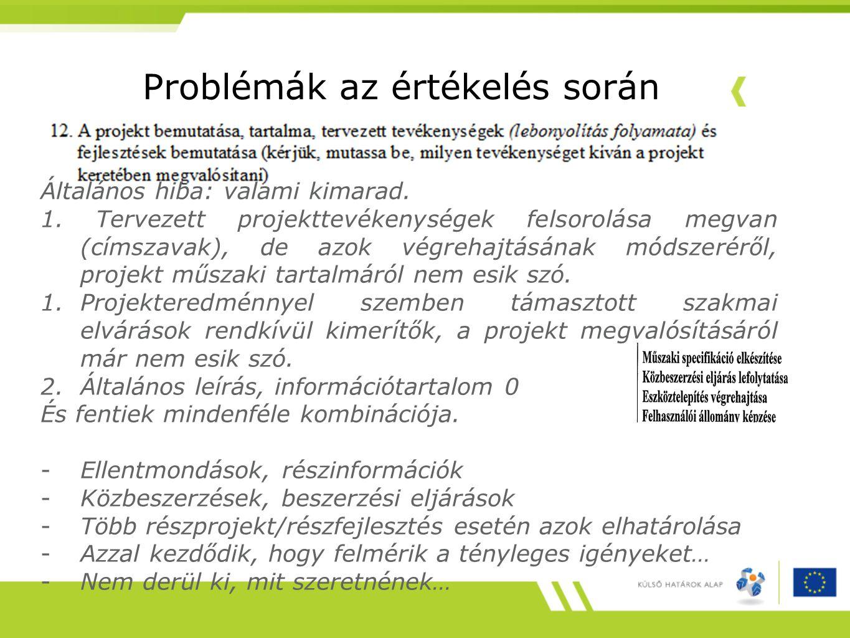 Problémák az értékelés során Általános hiba: valami kimarad. 1. Tervezett projekttevékenységek felsorolása megvan (címszavak), de azok végrehajtásának