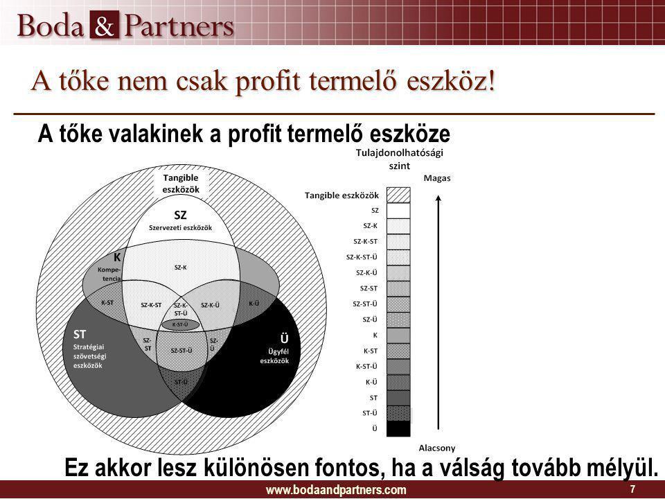 A tőke nem csak profit termelő eszköz.