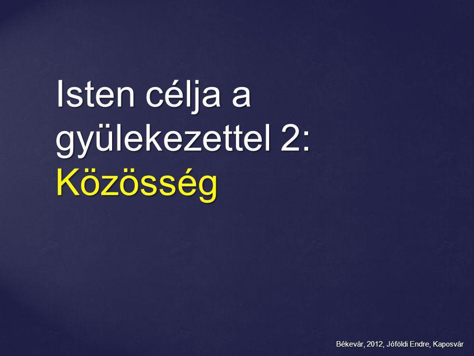Békevár, 2012, Jóföldi Endre, Kaposvár Isten célja a gyülekezettel 2: Közösség