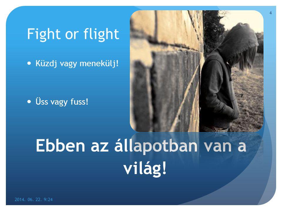 Fight or flight  Küzdj vagy menekülj!  Üss vagy fuss! Ebben az állapotban van a világ! 2014. 06. 22. 9:26 4