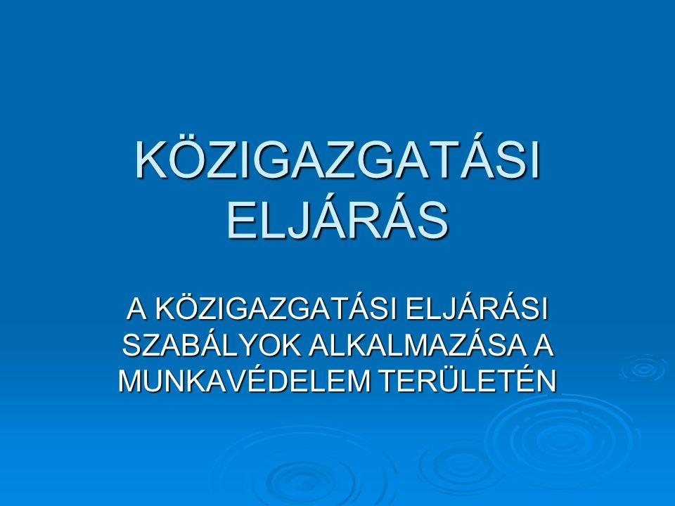 A közigazgatási eljárás és szolgáltatás jogszabályi alapja  2004.