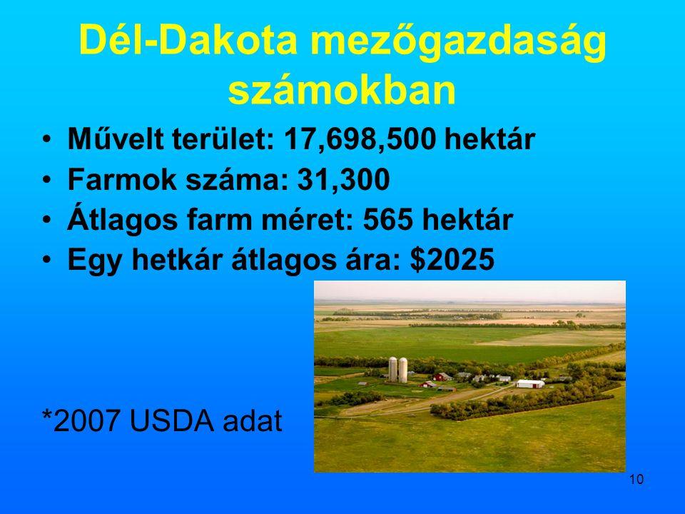 10 Dél-Dakota mezőgazdaság számokban •Művelt terület: 17,698,500 hektár •Farmok száma: 31,300 •Átlagos farm méret: 565 hektár •Egy hetkár átlagos ára: