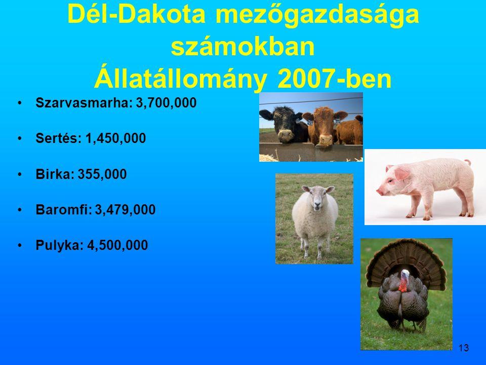 13 Dél-Dakota mezőgazdasága számokban Állatállomány 2007-ben •Szarvasmarha: 3,700,000 •Sertés: 1,450,000 •Birka: 355,000 •Baromfi: 3,479,000 •Pulyka: