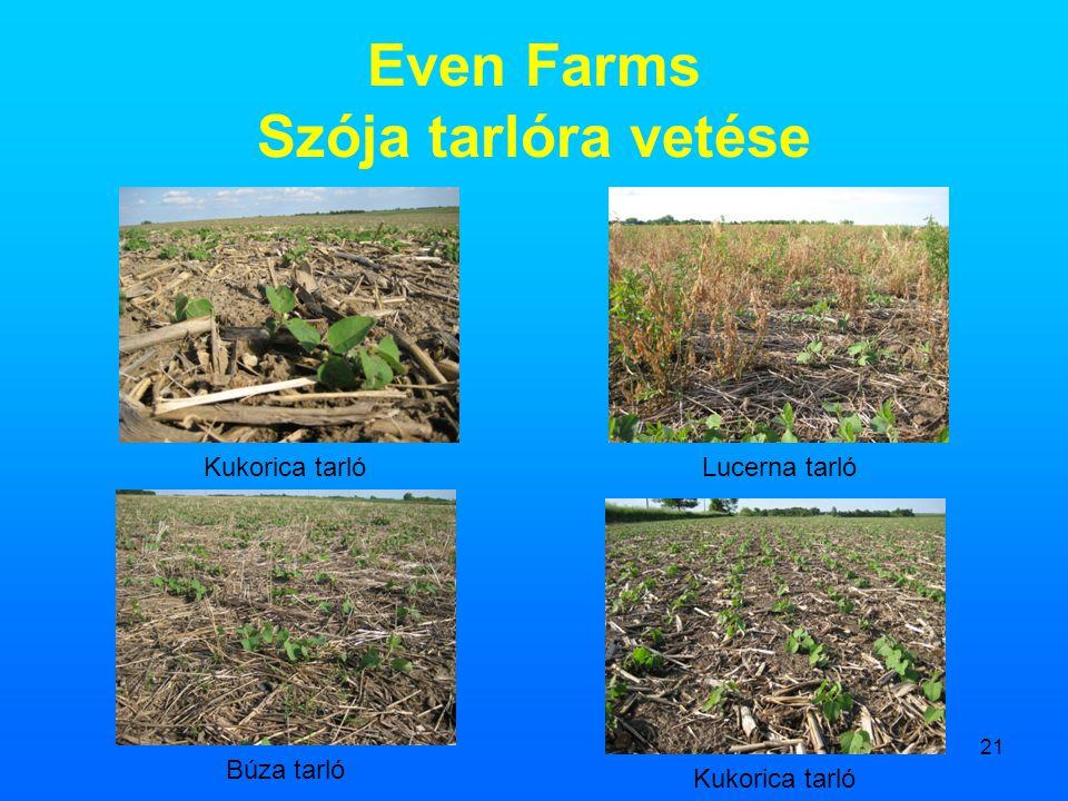21 Even Farms Szója tarlóra vetése Kukorica tarlóLucerna tarló Búza tarló Kukorica tarló