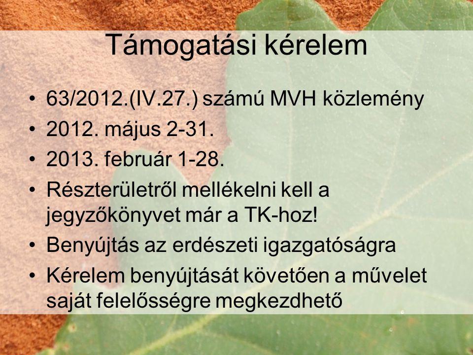 Támogatási kérelem •63/2012.(IV.27.) számú MVH közlemény •2012.