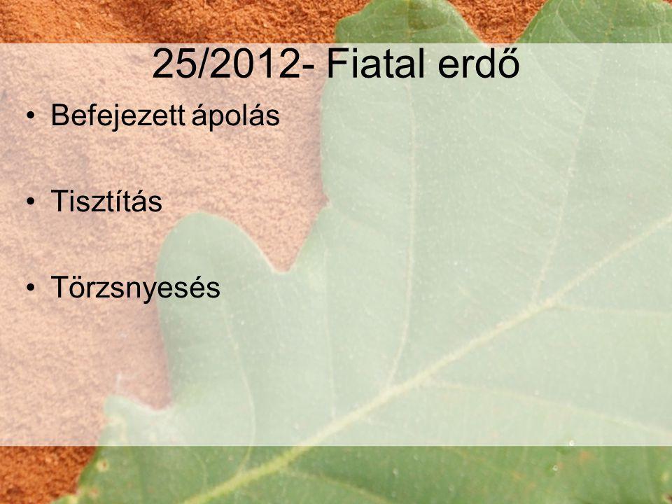25/2012- Fiatal erdő GYIK Maximalizálja valami a benyújtható KK-k számát azon kívül, hogy hány erdőrészlete volt TK-oldalon.
