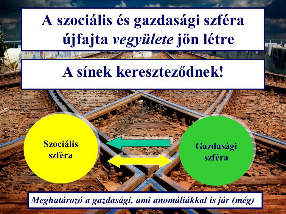A szociális és gazdasági szféra újfajta vegyülete jön létre A sínek kereszteződnek! Szociális szféra Gazdasági szféra Meghatározó a gazdasági, ami ano