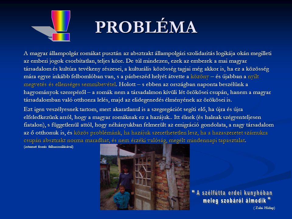 PROBLÉMA * A prezentációban felhasznált képek Zalaegerszegen és a környező településeken készültek *