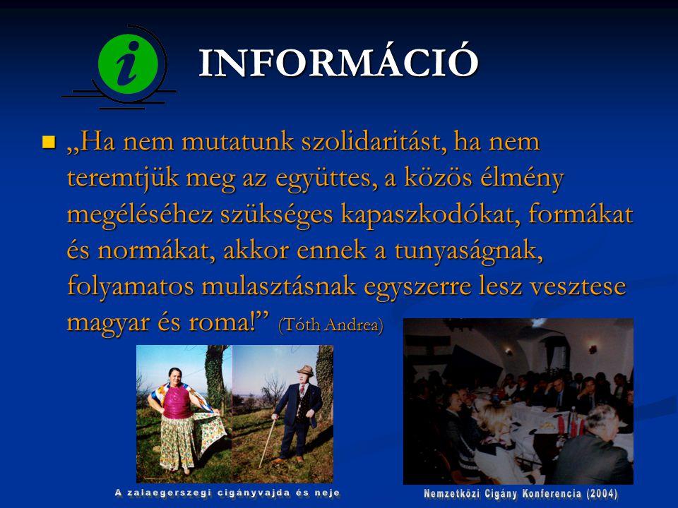 """MEGOLDÁS """"CIGÁNYOKÉRT A CIGÁNYOKKAL  SZOCIALIZÁCIÓ  FELZÁRKÓZTATÁS  PÉLDAMUTATÁS  HIGIÉNIA  CIGÁNYOK TANÍTTATÁSA  Itt az idő, hogy legalább a romakérdésben az értelmiségi, a politikai- és médiaelit egy új, civilizatorikus szövetséget kössön egymással!"""
