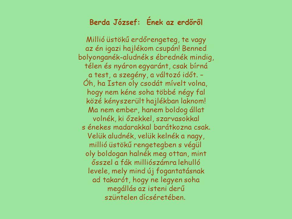 Berda József: Ének az erdőről Millió üstökű erdőrengeteg, te vagy az én igazi hajlékom csupán.