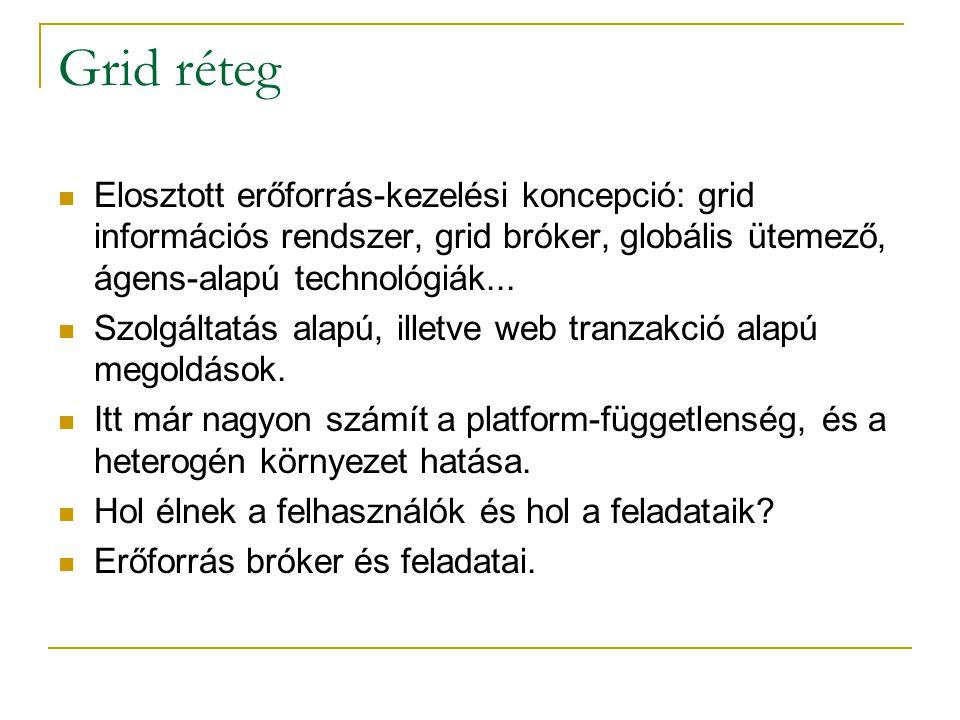 Grid réteg  Elosztott erőforrás-kezelési koncepció: grid információs rendszer, grid bróker, globális ütemező, ágens-alapú technológiák...  Szolgálta