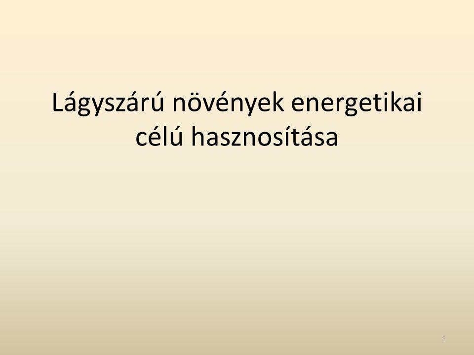 Lágyszárú növények energetikai célú hasznosítása 1