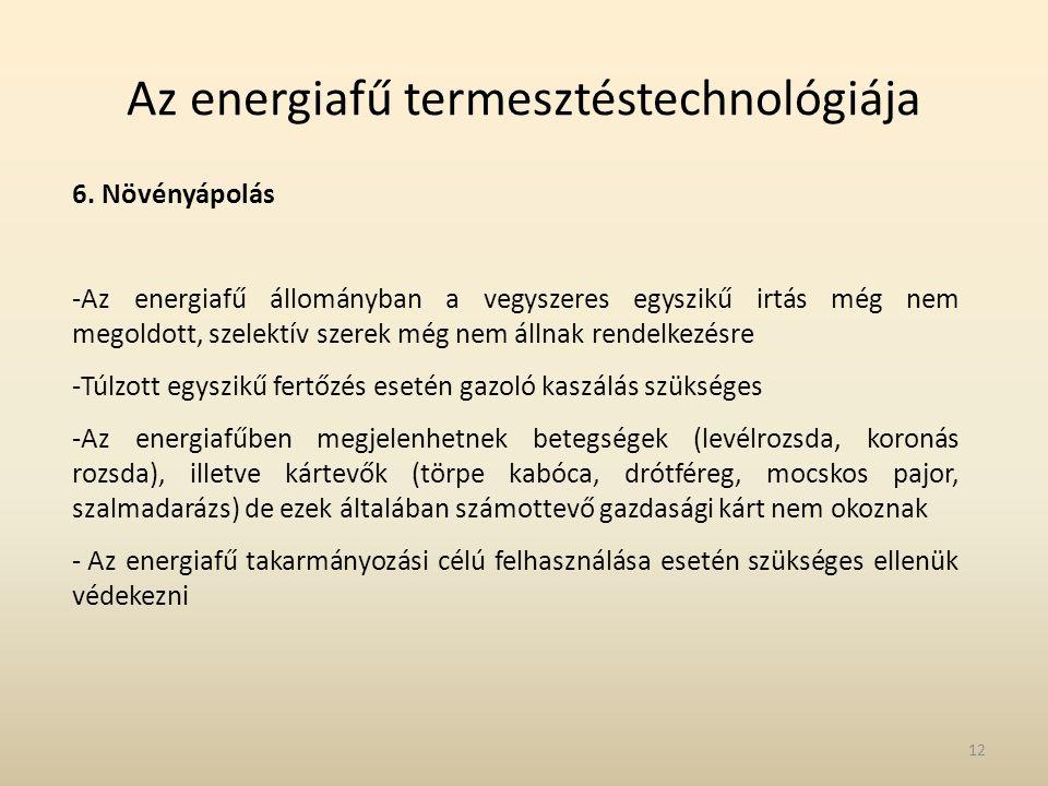 Az energiafű termesztéstechnológiája 6. Növényápolás -Az energiafű állományban a vegyszeres egyszikű irtás még nem megoldott, szelektív szerek még nem