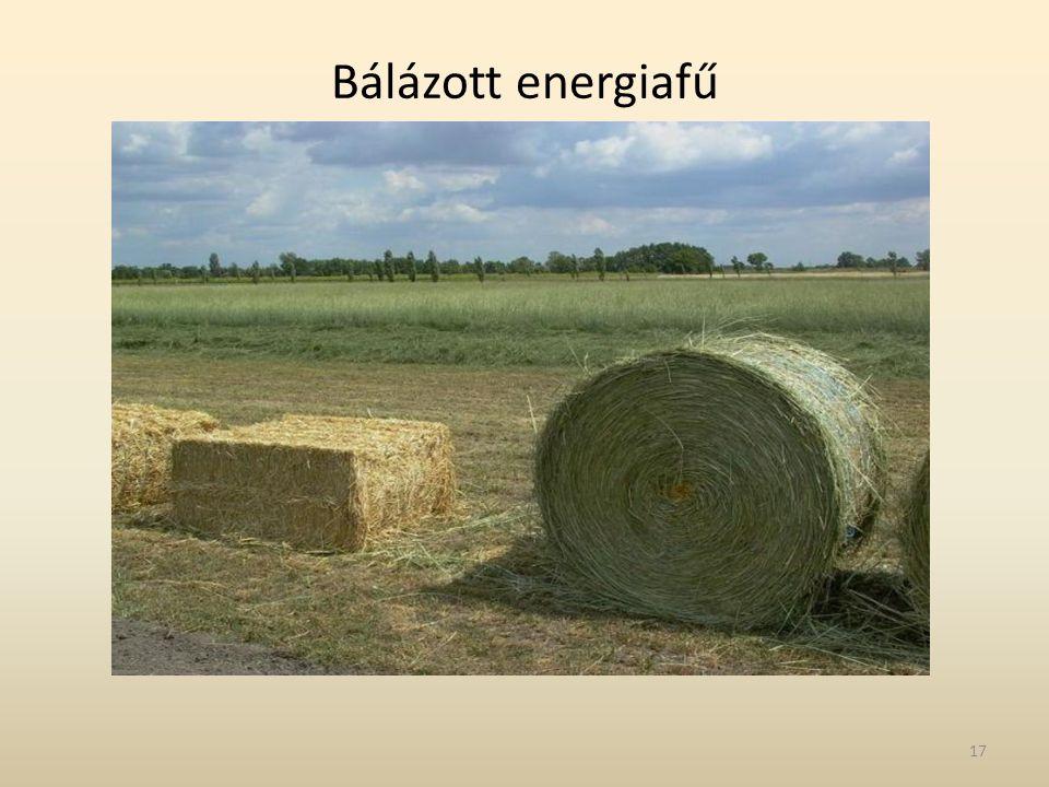 Bálázott energiafű 17