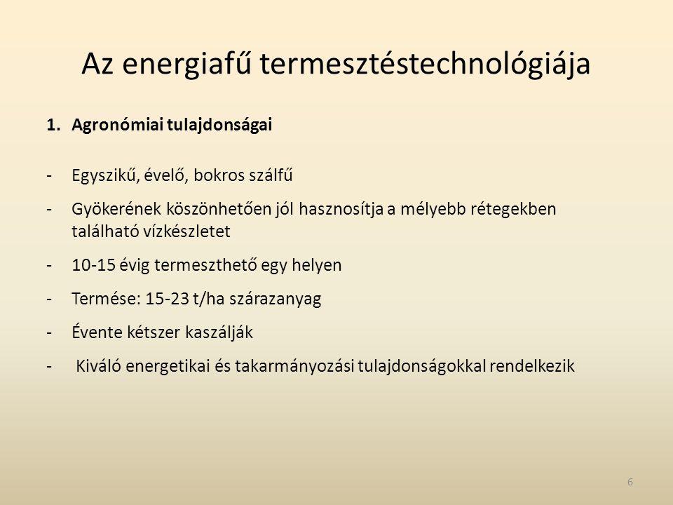 Az energiafű termesztéstechnológiája 1.Agronómiai tulajdonságai -Egyszikű, évelő, bokros szálfű -Gyökerének köszönhetően jól hasznosítja a mélyebb rét