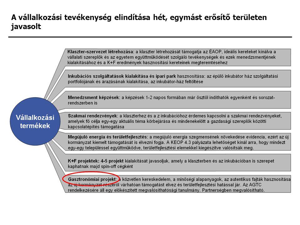 A vállalkozási tevékenység elindítása hét, egymást erősítő területen javasolt