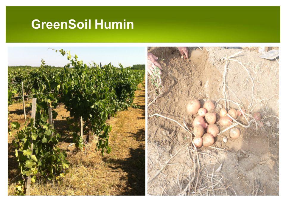 PANNON-RADE KFT.GreenSoil Humin