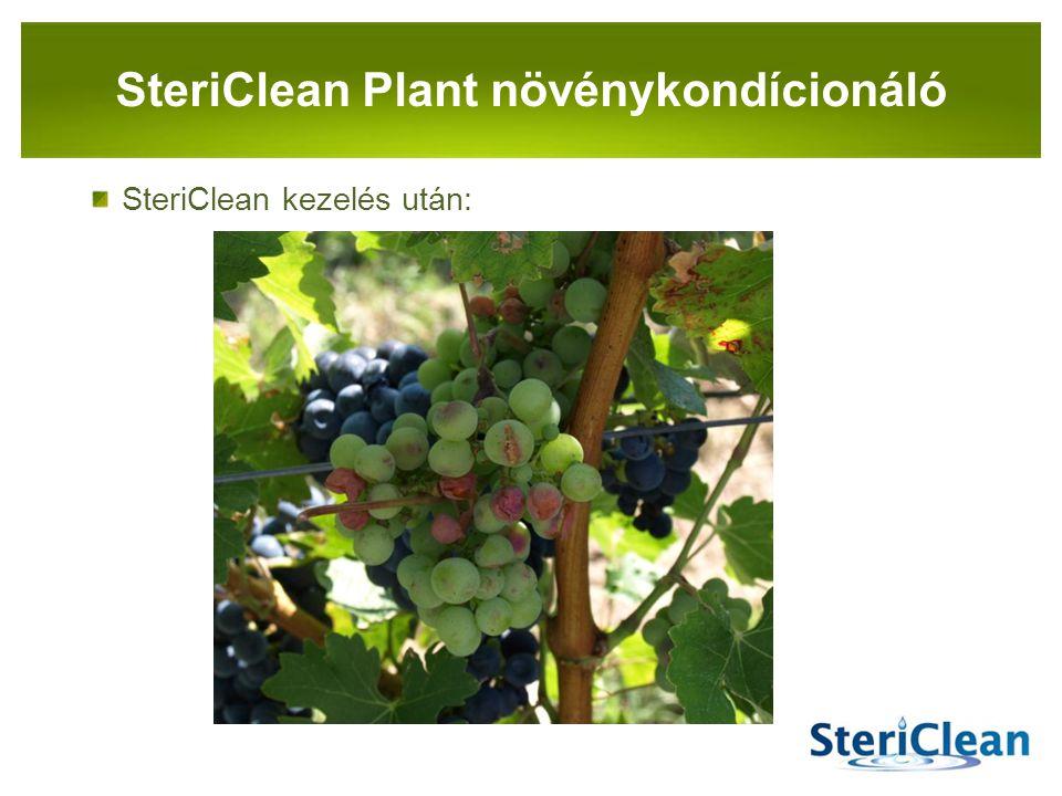 PANNON-RADE KFT. SteriClean kezelés után: SteriClean Plant növénykondícionáló