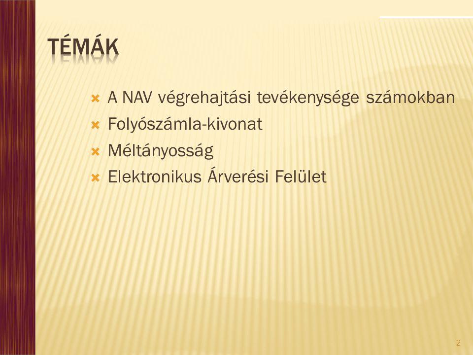 2  A NAV végrehajtási tevékenysége számokban  Folyószámla-kivonat  Méltányosság  Elektronikus Árverési Felület