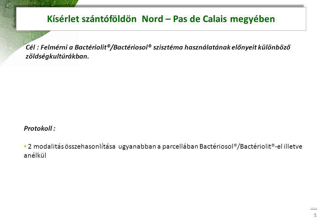 Cél : Felmérni a Bactériolit®/Bactériosol® szisztéma használatának előnyeit különböző zöldségkultúrákban.