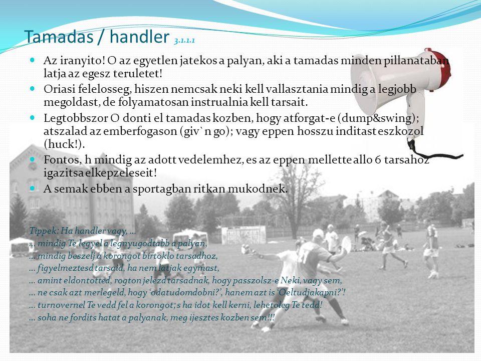 Tamadas / handler 3.1.1.1  Az iranyito.