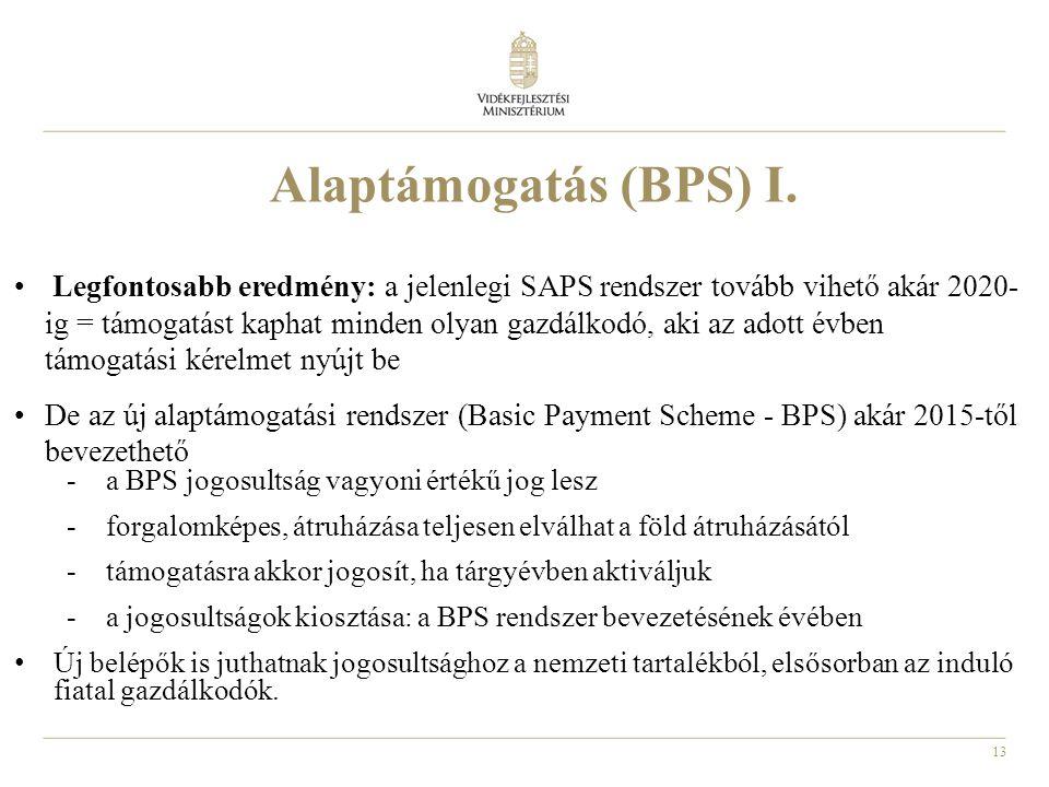 13 Alaptámogatás (BPS) I.