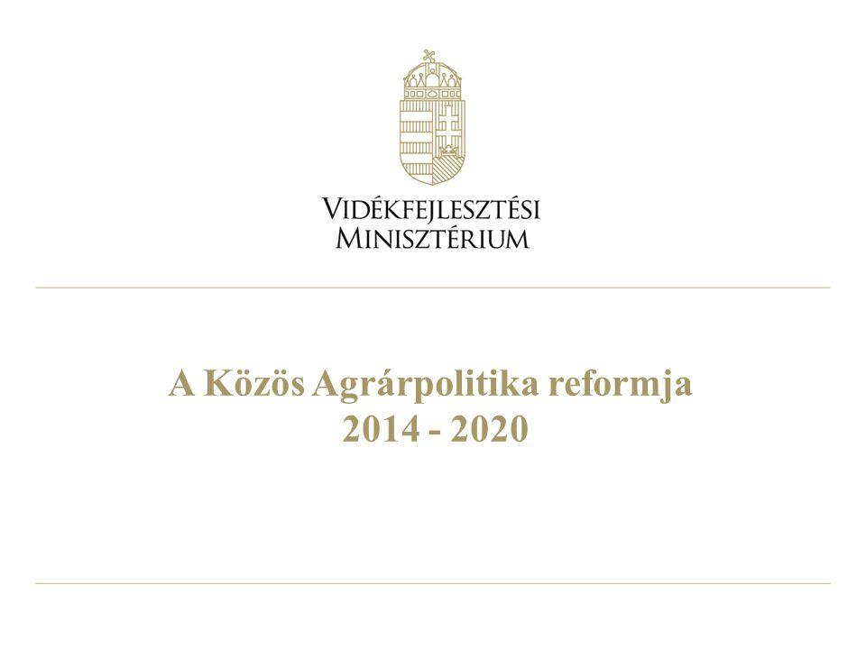 8 A 2014-2020 közötti többéves pénzügyi tervről szóló megállapodás főbb számai Mrd €2007-20132014-2020VáltozásVáltozás (%) EU teljes költségvetés 994960-3497 KAP költségvetés 421373-4889 Közvetlen támogatások (és piaci intézkedések) 319278-4187 Vidékfejlesztés 9885-1387 Magyarországra jutó KAP támogatás 10,412,31,9118 Magyarország részesedése a KAP támogatásokból (%) 2,363,190,83135 Magyarország közvetlen támogatási allokációja 6,68,82,3135 Magyarország vidékfejlesztési allokációja 3,93,5-0489 forrás: Az AKI Agrárpolitikai Kutatások Osztályán készült számítások az MFF megállapodás és AgraFacts alapján