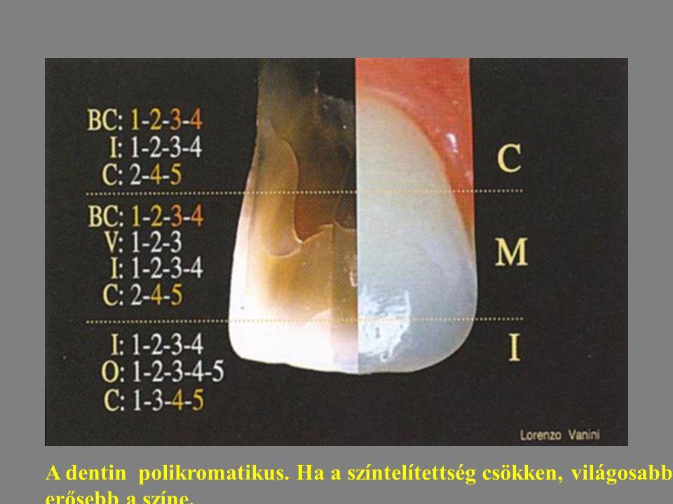 A dentin polikromatikus. Ha a színtelítettség csökken, világosabb a fog, ha nő erősebb a színe.