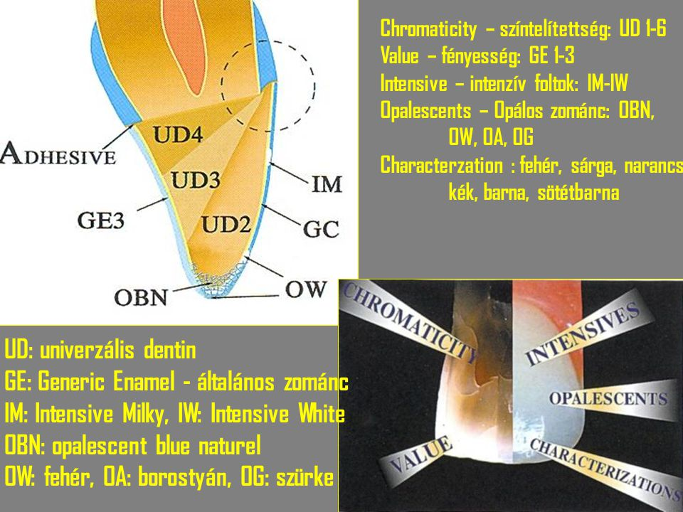Chromaticity – színtelítettség: UD 1-6 Value – fényesség: GE 1-3 Intensive – intenzív foltok: IM-IW Opalescents – Opálos zománc: OBN, OW, OA, OG Chara