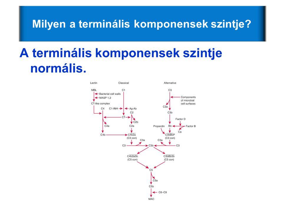 Milyen a terminális komponensek szintje? A terminális komponensek szintje normális.