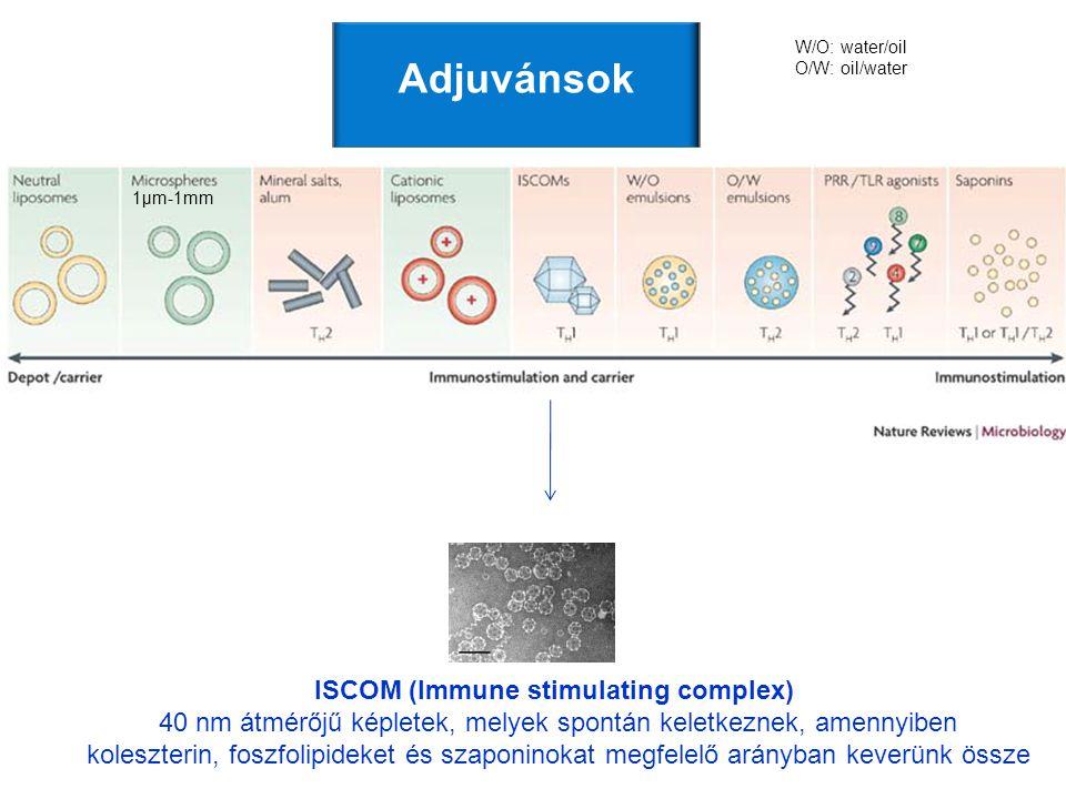 ISCOM (Immune stimulating complex) 40 nm átmérőjű képletek, melyek spontán keletkeznek, amennyiben koleszterin, foszfolipideket és szaponinokat megfel