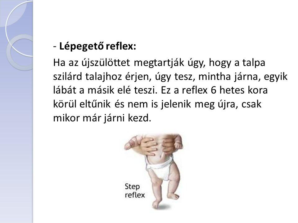 - Lépegető reflex: Ha az újszülöttet megtartják úgy, hogy a talpa szilárd talajhoz érjen, úgy tesz, mintha járna, egyik lábát a másik elé teszi. Ez a