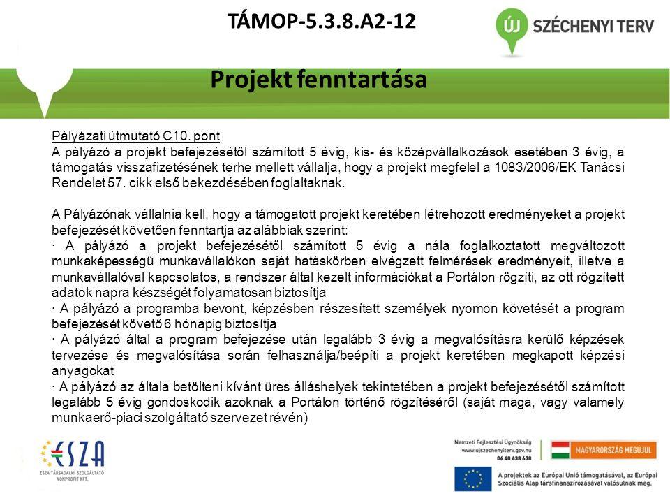 TÁMOP-5.3.8.A2-12 Projekt fenntartása Pályázati útmutató C10. pont A pályázó a projekt befejezésétől számított 5 évig, kis- és középvállalkozások eset