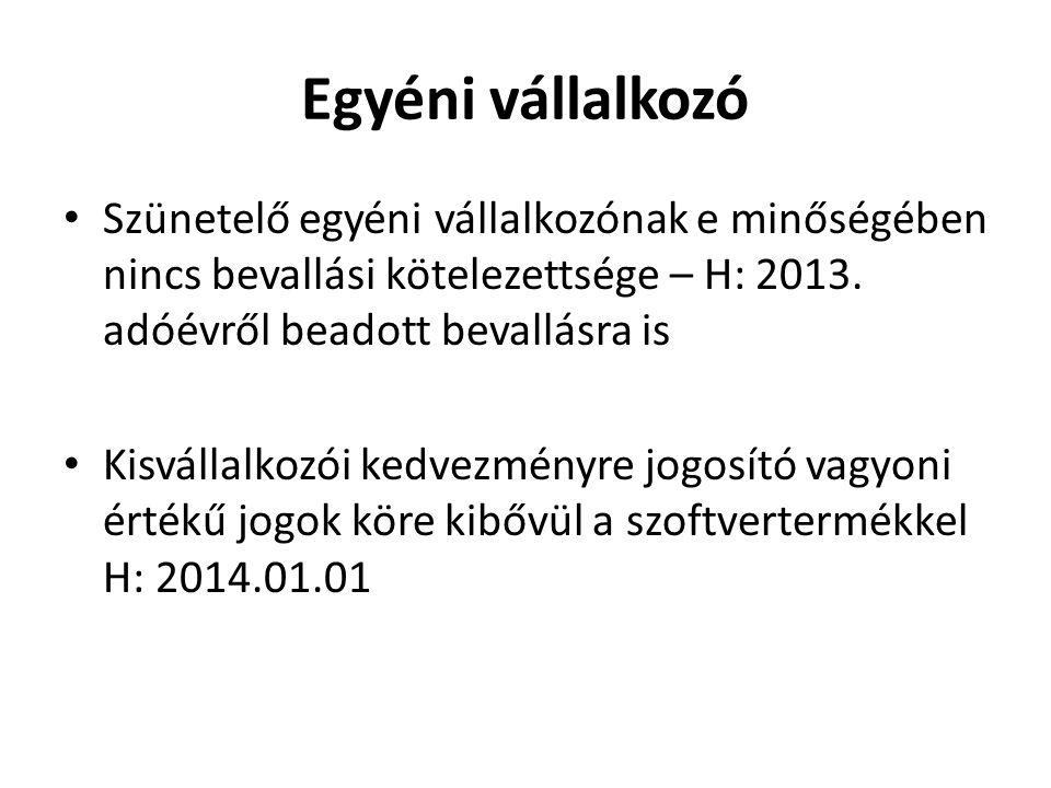Egyéni vállalkozó • Szünetelő egyéni vállalkozónak e minőségében nincs bevallási kötelezettsége – H: 2013. adóévről beadott bevallásra is • Kisvállalk