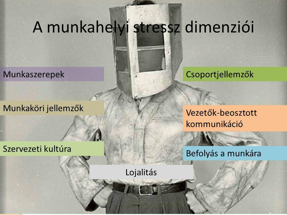 A munkahelyi stressz dimenziói Munkaszerepek Munkaköri jellemzők Csoportjellemzők Vezetők-beosztott kommunikáció Szervezeti kultúra Lojalitás Befolyás